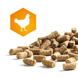 Ganz neu! AktivDog Premium Leckerlis Huhn – Das natürliche Schweizer Hundefutter
